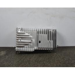 Amplificatore Bose Renault Laguna III cod: 280630002R