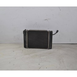Radiatore + elettroventola Kymco People S 250 dal 2006 al 2012